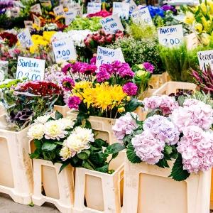 Wpływ pandemii na branżę kwiatową? Ponad 4 miliardy Euro strat tylko w marcu i kwietniu.