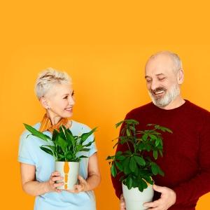 Czy warto mówić do roślin?