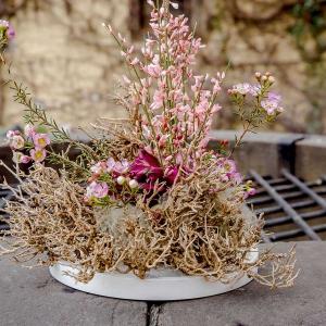 Wiosenne wydania NDiO-Flora