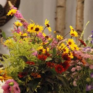 Naturalnie piękne kwiaty - tylko z bio farmy!